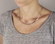 stelt-halsbandsilverhamrat